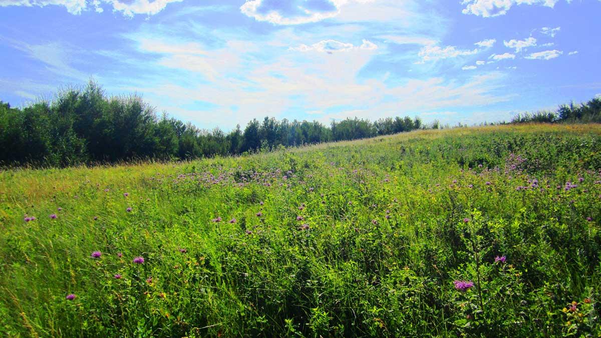 acreage-development-close-to-saskatoon