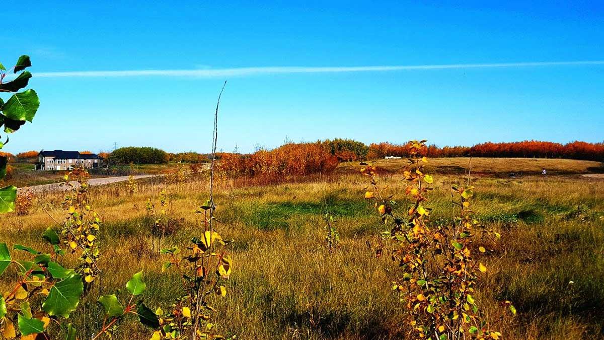 acreage-development-land
