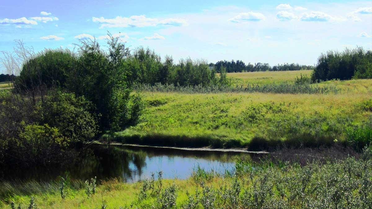 acreages-in-corman-park