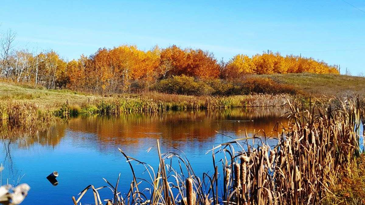 development-land-near-saskatoon