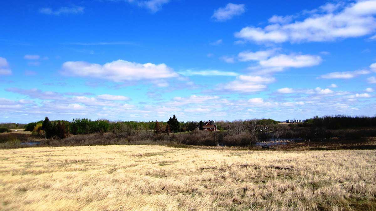 saskatoon-acreage-development
